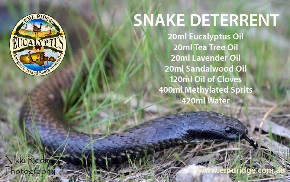 rattlesnake deterrents
