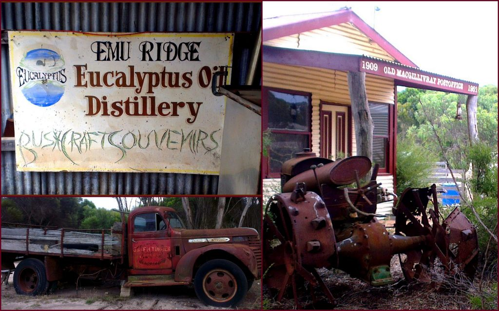 emu-ridge-eucalyptus-oil-distillery-kangaroo-islan1