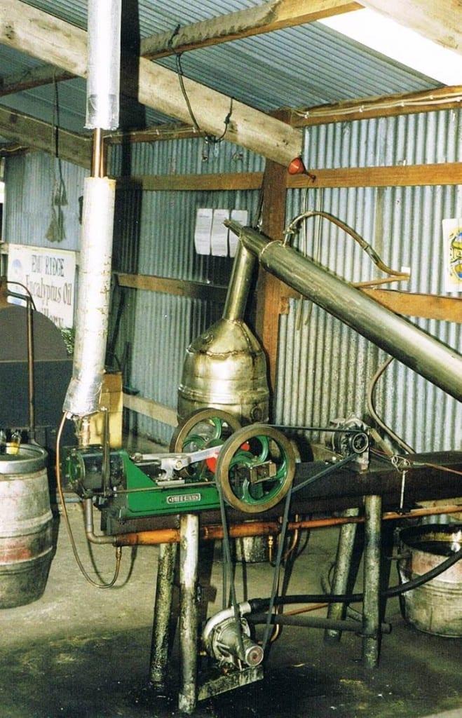 Emu Ridge steam engine