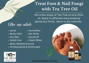 foot fungi tea tree oil web size (002)