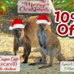 10% Sale V2