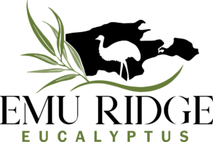 Emu Ridge Eucalyptus C New