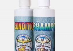 Conditioner & Shampoo